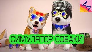 Симулятор МАЛЕНЬКОЙ СОБАКИ - РАЗГРОМИЛИ ПАРК АТТРАКЦИОНОВ. DOG SIMULATOR RUPPY CRAFT