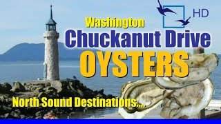 Chuckanut Oysters - Washington Oyster Farm Taylor Shellfish On Chuckanut Drive
