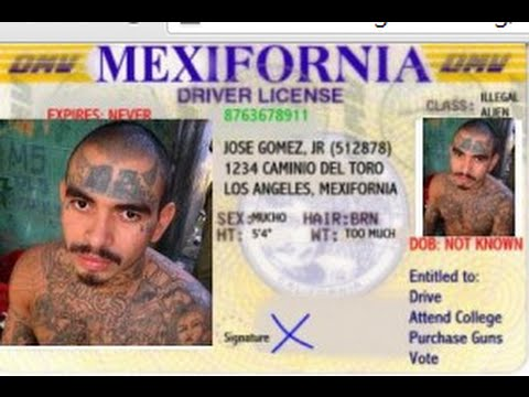 CALIFORNIA PASSES LAW GIVING ILLEGAL IMMIGRANTS FREEDOM. CITIZENS GET 930 NEW LAWS