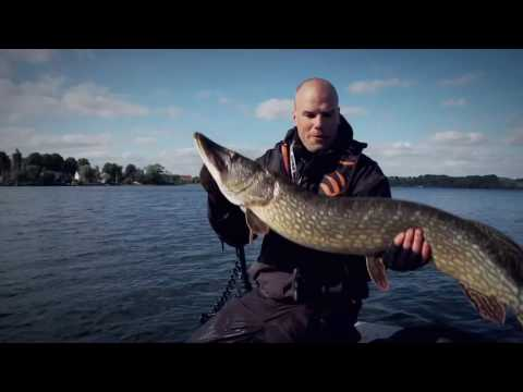 Vote Pike! Fishing TV Backs The Water Wolf In UK National Fish Poll