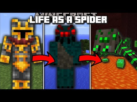 Minecraft LIFE AS A SPIDER MOD / BECOME A SPIDER AND ENTANGLE YOUR WAY LIKE SPIDERMAN!! Minecraft