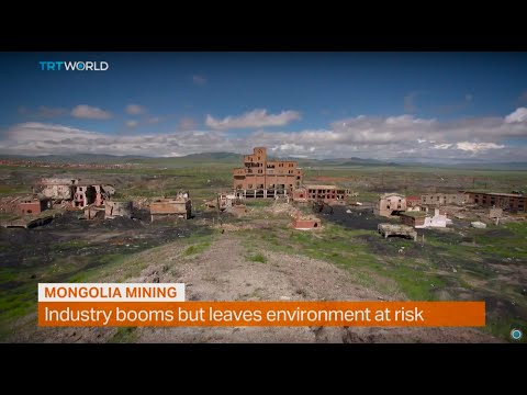 Money Talks: Mongolia mining industry, interview with Shamim Chowdhury