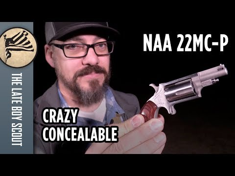 This Gun Is SO Easy To Carry, But Is It Effective? NAA 22MC-P