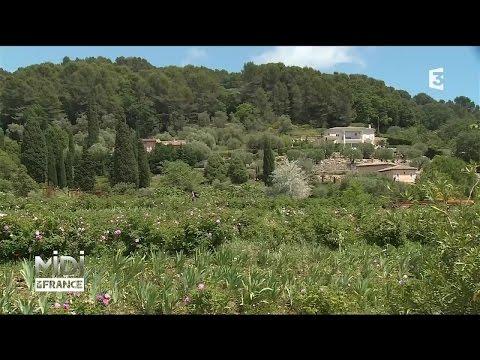 SUIVEZ LE GUIDE : Grasse, un parfum de Côte d'Azur