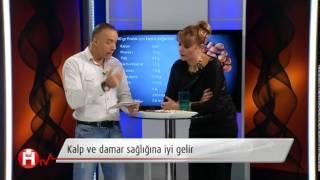 Fındığın faydaları - yeni bir ben - HTV Türkiye - Fırat Çakır