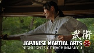 Iaido Demonstration Japanese Martial Arts Highlights 2016