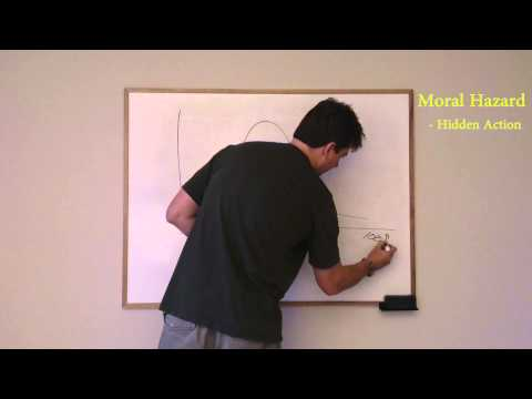 Econ in HD: Moral Hazard and Adverse Selection
