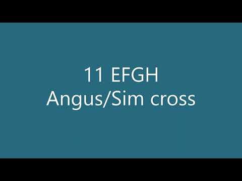 11 EFGH