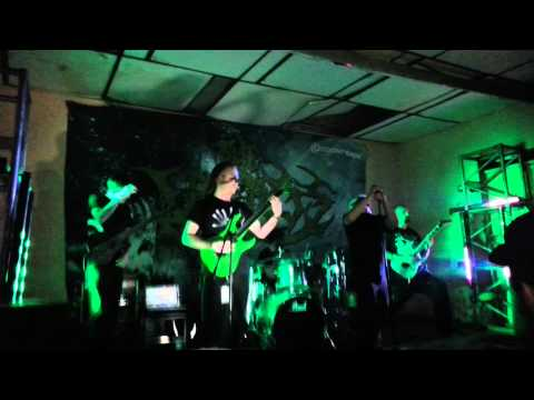 the faceless - accelerated evolution live