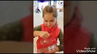 Kupujemy rybkę Nowe zwierze w domu Bojownik środowisko