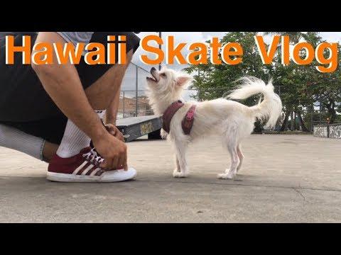 Kailua Rec Center Skatepark Vlog   Skate Vlog   Fun Boardslides   Skate Hawaii   Skateboard Vlog