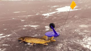 Зимняя рыбалка Ловля ЩУКИ на жерлицы Окунь на блесну балансиры мормышку
