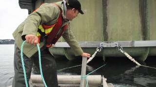 Building the Future of Salmon Farming...in 90 Seconds