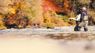 Learn to Fly-Fish on the Umpqua River
