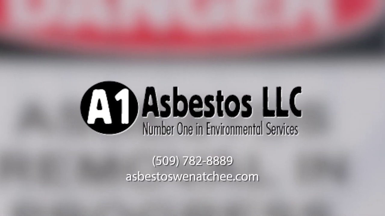 Mold Removal and Remediation Company in Wenatchee, WA