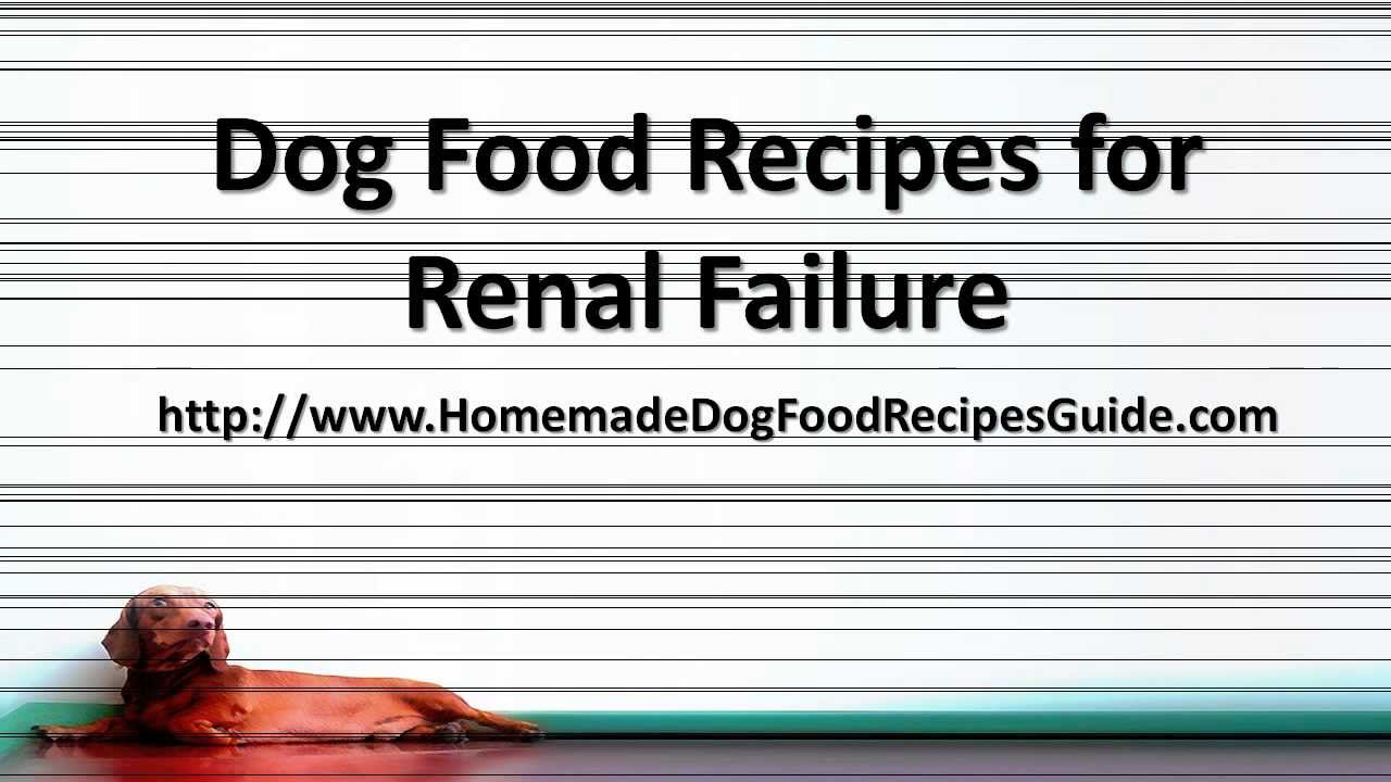 Dog Food Recipes For Kidney