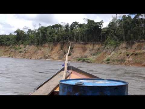 Upper Madre de Dios River: Atalaya to Colorado