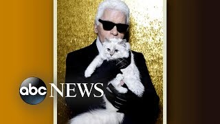 'GMA' Hot List: Karl Lagerfeld's cat will reportedly inherit some of his fortune