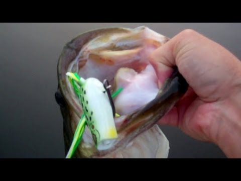 Top Water Bass Fishing With Frogs. Spro Poppin Frog.