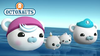 Octonauts - Family Affair
