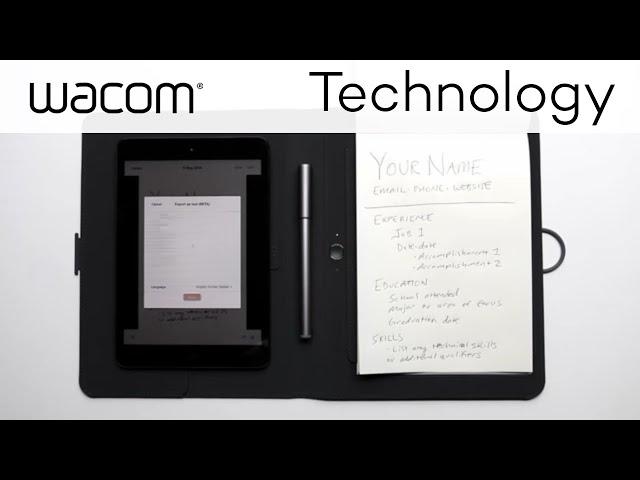 20+ Resume Format Information Technology Ideas - Kitchens küchen