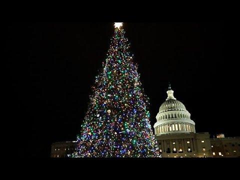 Größter Tannenbaum Deutschlands.Weihnachtsbaum Knappheit In Den Usa Menschen Brauchen Bäume