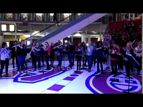 HDCH Flash Mob at the Montreal Forum