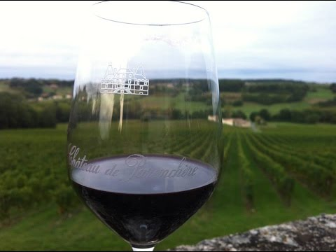 Traveling in Bordeaux Wine Tours & Top Travel Tips