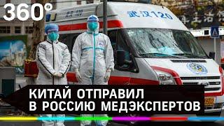 Китай направил медэкспертов в Россию для борьбы с коронавирусом