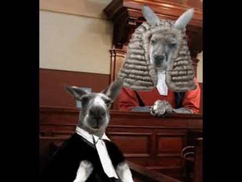 D. I. Y. Kangaroo Courts Part 1 - Foundational things about the Courts