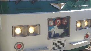 【唯一のローカル線直通の国鉄特急】国鉄特急JNR踊り子185系 今まで40年間ありがとう【JR東海からいずっぱこへ】