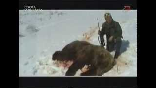 Резотто из сердца медведя