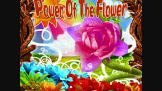 Harmonic Frequency - Power Of The Flower