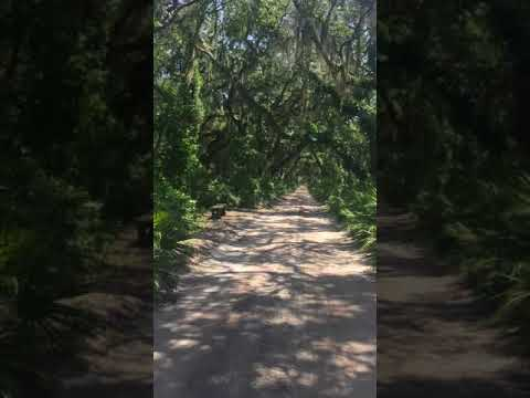 Golf Cart Ride to the Ferry - Cumberland Island GA