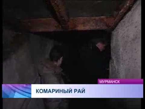 Представители государственной жилищной инспекции Мурманской области провели обследование дома
