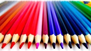 Video Abecedario en Español para Niños|Aprenda ABC con lápices de colores abcdefg|Aprenda el Alfabeto ABC download MP3, 3GP, MP4, WEBM, AVI, FLV Agustus 2018