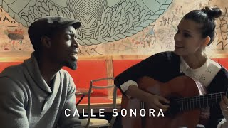 Calle Sonora | Skyland: Tula & Mel Semé - The Core