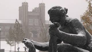 A Snowy Day | Sights and Sounds WashU | Washington University