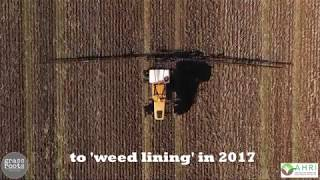Video 'Weedlining' after chaff decks download MP3, 3GP, MP4, WEBM, AVI, FLV November 2017