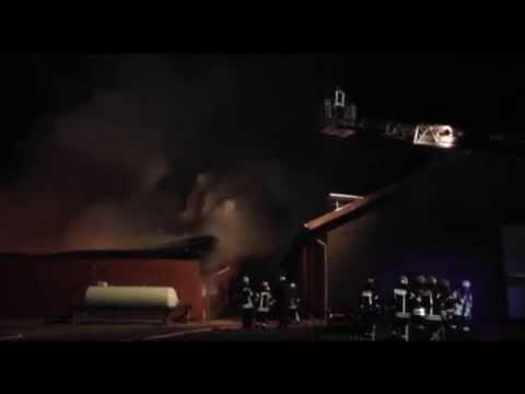 Rund 3000 Ferkel verenden bei Großbrand in Bocholt