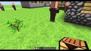 Minecraft Bitkiler Ve Ağaçlar Nasıl Büyütülür