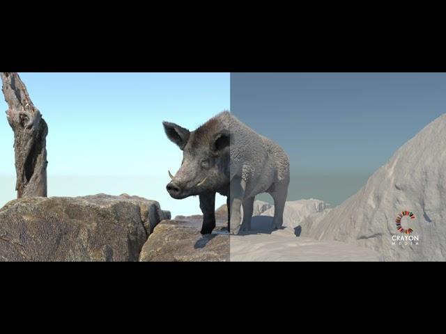 CGI 3D Animation  Maya | Arnold render