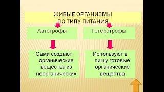 Автотрофы. Гетеротрофы.(, 2018-03-09T17:20:27.000Z)