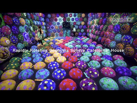 Rapidly Rotating Bouncing Sphere Caterpillar House