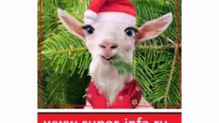 Песнь новогоднего козла №2! С наступающим! Море позитива!