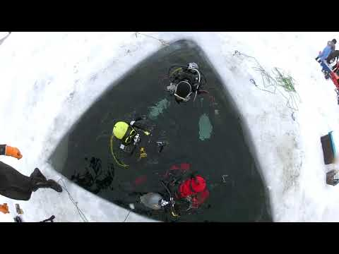 オホーツク流氷ダイビングエントリー