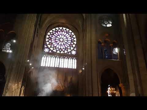 Inside of world famous saint Michel notre dame cathedral Paris