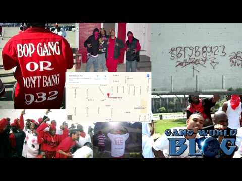 Be Bop Bloods and Family Swan Bloods War in Los Angeles 2015