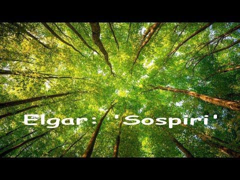 Elgar: Sospiri - English Chamber Orchestra