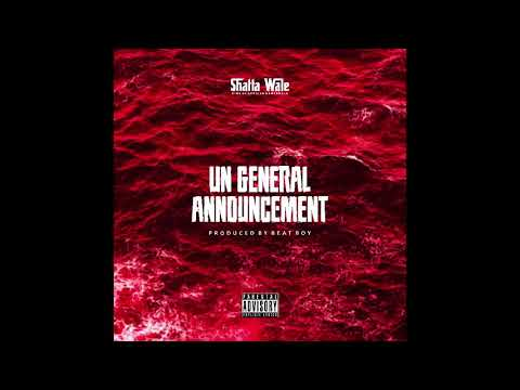 Shatta Wale – UN Announcement 2